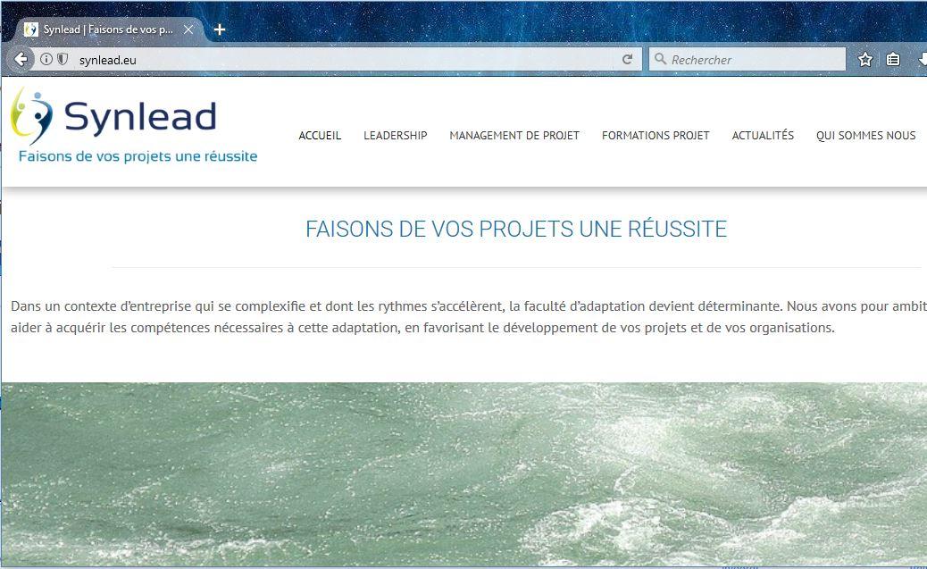 Site Web Conseil