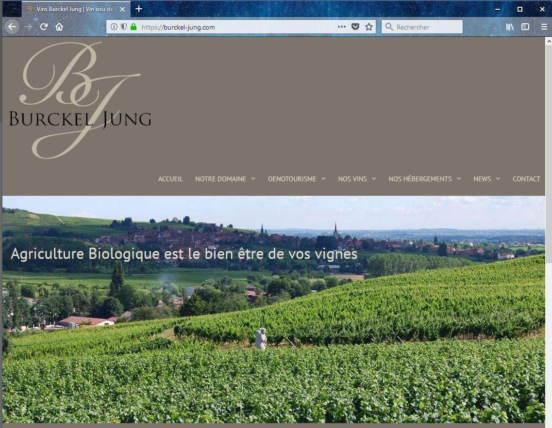 Vins d'Alsace vente en ligne