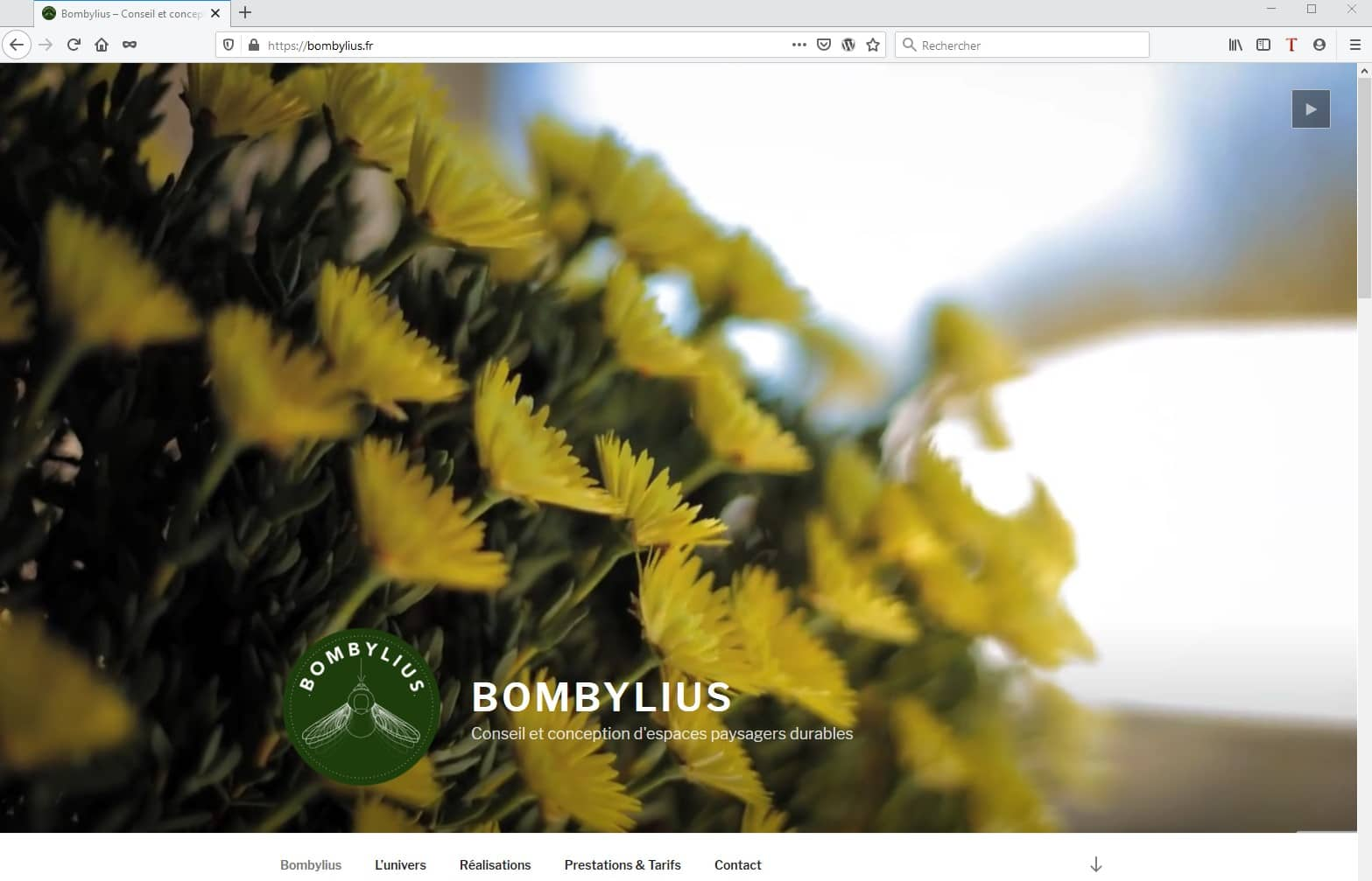 Site avec Video